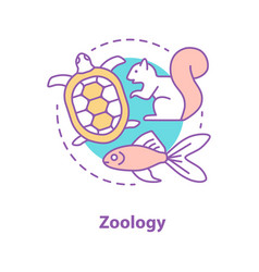 Zoology concept ico vector
