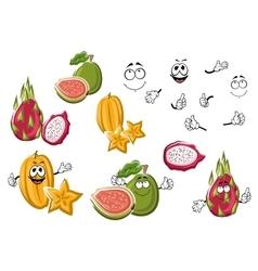 Cartoon fresh tropical fruits characters vector image vector image