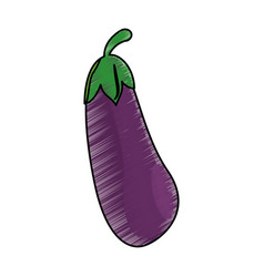 drawing eggplant food nutrition vector image vector image