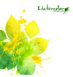Watercolor texture and splashes green leaves vector image vector image