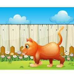 A fat cat at the backyard vector