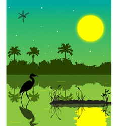 everglades 2 vector image vector image