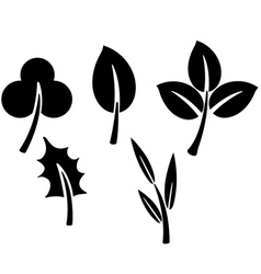 Black leaves vector