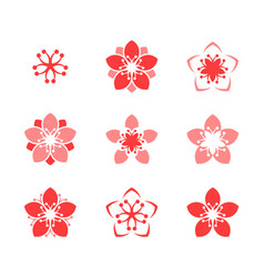 cherry blossom icon set vector image