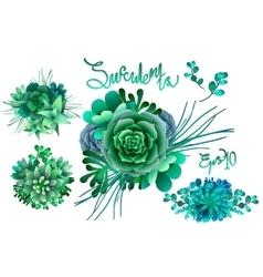 Cute succulent vignettes vector