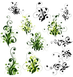 Floral decorations set vector