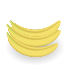 Fresh bananas vector