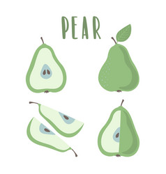 green pear hand drawn set isolated on white vector image