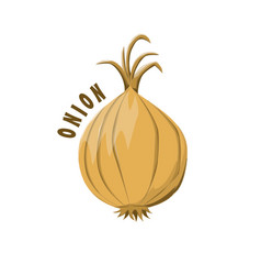 Logo icon design onion farm vector