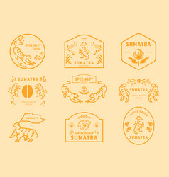 Sumatra coffee logo badge with tiger vector