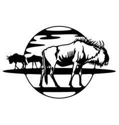 Wildebeest - savanna africa wildlife wildlife vector