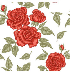 red rose flowers buds and leaves seamless vector image vector image
