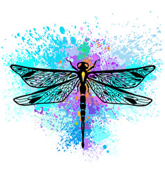 Dragonfly on colorful background vector