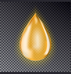 Drop of oil isolated on a transparent background vector