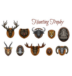 hunting trophies hunted animal heads on wall vector image