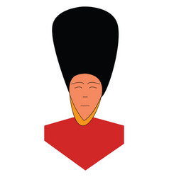 Man in guard honor dress or color vector