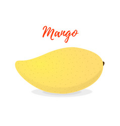 tropical fruit - exotic yellow mango vector image