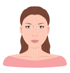 facial massage lines for applying cream on face vector image