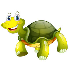 Cute tortoise on white background vector