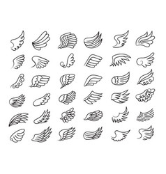 feather wings freedom symbols fly elements vector image