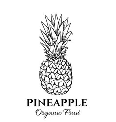 Hand drawn pineapple icon vector