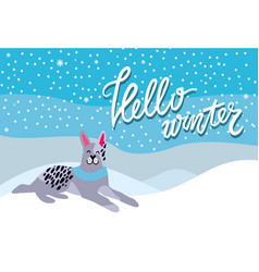 hello winter poster with spotted grey dog collar vector image