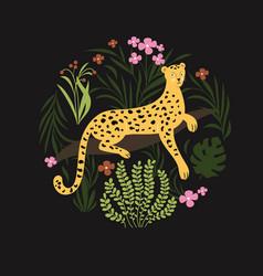 jungle leopard vector image