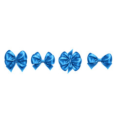 set isolated bow knots for gift decoration vector image