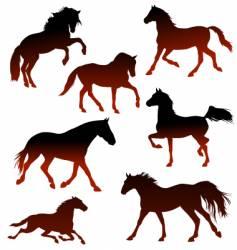 Stallions vector