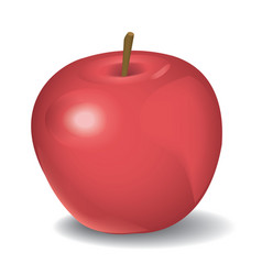 red apple isolated on white vector image vector image