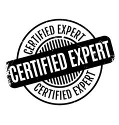 Certified expert rubber stamp vector