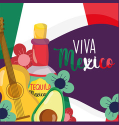 mexican independence day tequila guitar avocado vector image