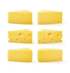 Set of Triangular Pieces Kind Swiss Cheese vector