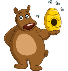 bear with beehive vector image