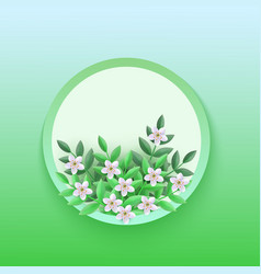 cherry or apple flowers vector image
