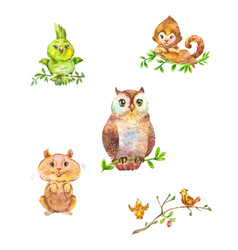 Cute forest animals and birds vector