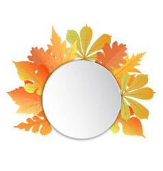 Frame with leaves template for autumn events to vector