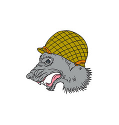grey wolf head growling ww2 helmet drawing vector image