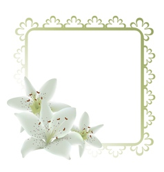 lily flowers frame vector image