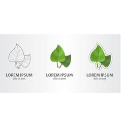 logo leaf vector image