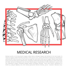 medical bone banner vector image