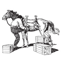 Pack horse vintage vector