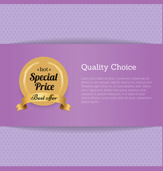 quality choice special price best offer gold label vector image