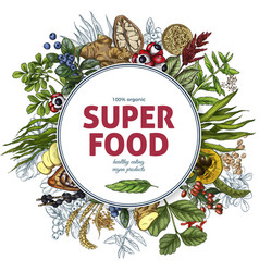 superfood round banner full color sketch vector image