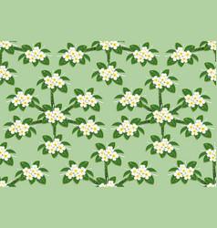 yellow plumeria flower pattern seamless on green vector image