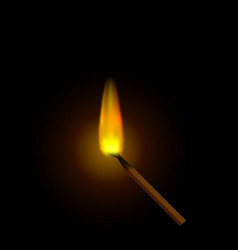a realistic burning match against a dark vector image