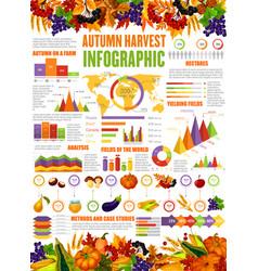 Autumn harvest season infographic vector