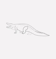 crocodile icon line element vector image