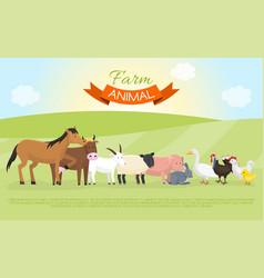 farm domestic animals banner vector image