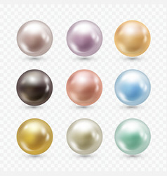 realistic pearls set vector image